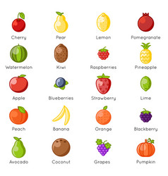 fresh fruit healthy food natural vitamins cartoon vector image
