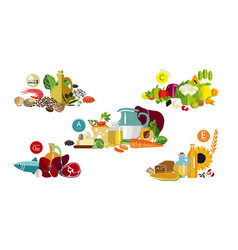 Fundamentals of a balanced diet vector