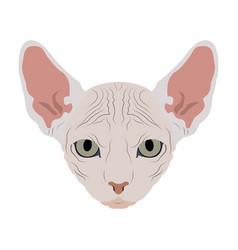 Isolated cat avatar vector