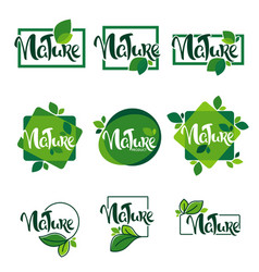 large collection lettering nature and organic vector image