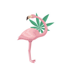 lovely flamingo with leave of tropical tree vector image