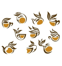 Organic herbal tea icons vector image