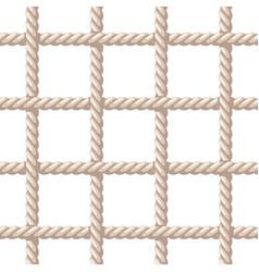 Rope net vector
