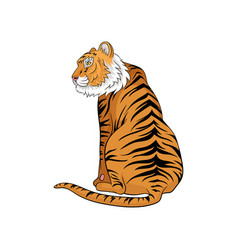 sitting bengal tiger vector image