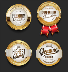 vintage style premium quality design collection vector image