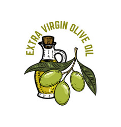 extra virgin olive oil olive branch vector image vector image