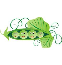 Green peas cartoon vector