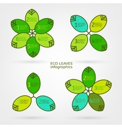 Leaves infographic vector image vector image