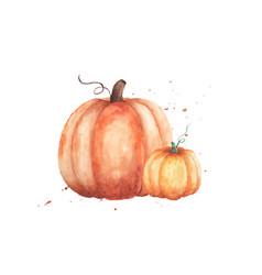 couple pumpkin watercolor hand painted vector image