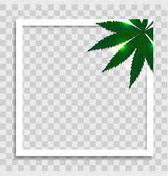 empty photo frame template with cannabis leaves vector image