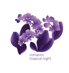 floral romantic greeting card template vector image