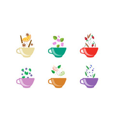 Herbal tea cups set tea with orange blueberry vector