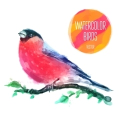 Watercolor wildlife natural winter vector