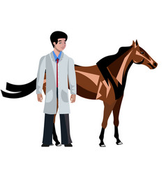 Horse with vet doctor on white background vector
