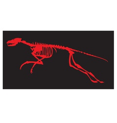 skeleton of a dinosaur vector image