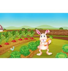 A bunny holding a carrot along the garden vector image
