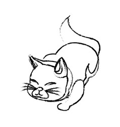 cat animal pet adorable sketch vector image