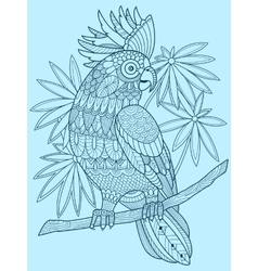 Cockatoo parrot coloring book for adults vector image vector image