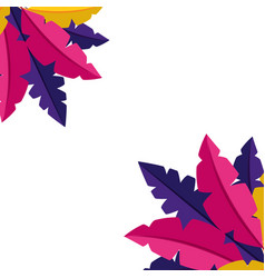 colored feathers decoration vector image