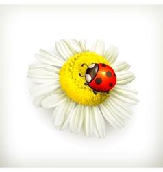 Ladybug and chamomile vector