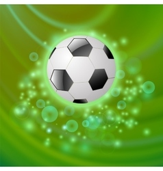 Sport Football Icon on Green Background vector image