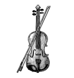 violin with bow vector image