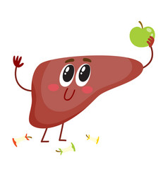 cute and funny smiling human liver character vector image