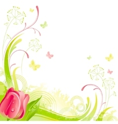 Floral summer background with red tulip flower vector image
