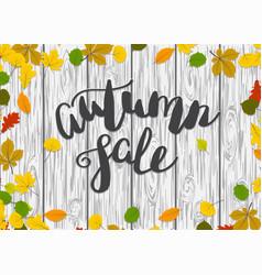 wooden autumn border leaf background vector image vector image