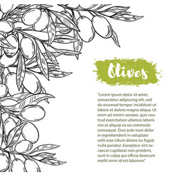 Border with colorful olives pattern vector