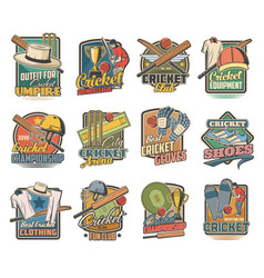 Cricket game icons field sports equipment vector