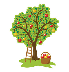 design of single apple tree with fruits basket vector image