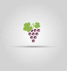 grape isolated colored icon vector image