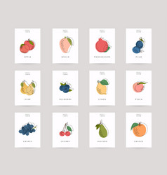 hand drawn fruits posters eco foods colorful vector image