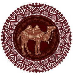round ornament pattern with camel vector image