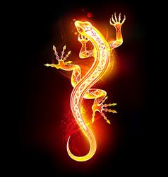 salamander vector image