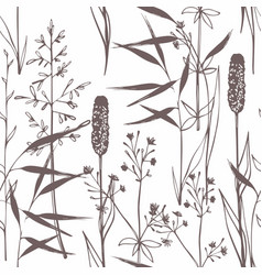 wildflowers seamless gentle pattern on a white vector image