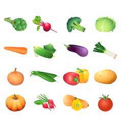 calorie table vegetables vector image