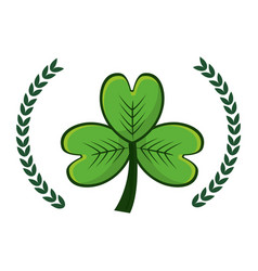 Clover plant with branches decoration vector