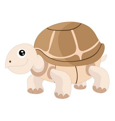 cute turtle vector image