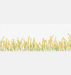 Flowers herbs border on transparent background vector