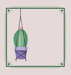 Frame with cactus houseplant hanging in macrame vector