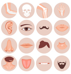 human nose ear mouth mustache hair and eye neck vector image