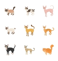 Kitty icons set cartoon style vector image