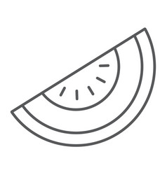Melon thin line icon fruit and vitamin diet sign vector