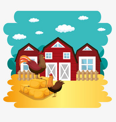 Roosters in the farm scene vector