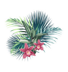 tropical flowers palm leaves jungle leaf orchid vector image