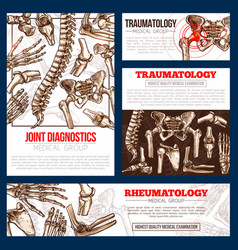 Medical banner template set of bone joint x-ray vector