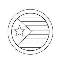 flag with star and stripes icon image vector image