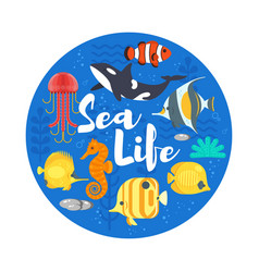 flat style of coralreef fish and sea life vector image